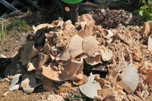 avant stump buster 2