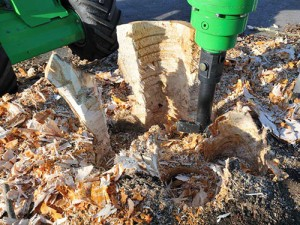 avant stump buster 6